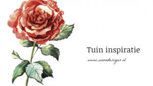 tuin inspiratie