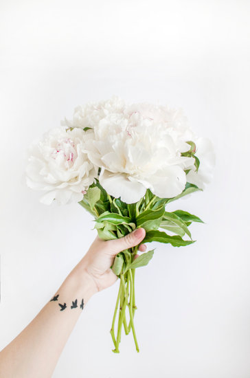 makkelijke kamerplanten en bloemen